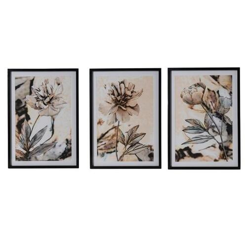 Annecy Floral Wall Art - Set of 3